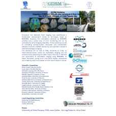 Integration of NMR and MRI with other techniques in Brain imaging, Chieti, May 30-31 2019